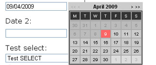 datepicker1